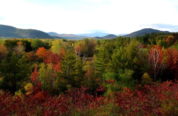 foliage near White Mountains New Hampshire travel