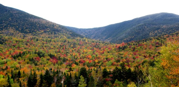 foliage up on the White Mountains New Hampshire travel