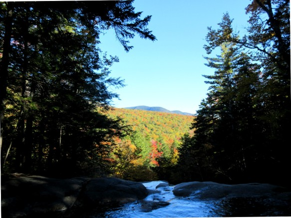 foliage view at Franconia Notch State Park near Kinsman Falls New Hampshire travel