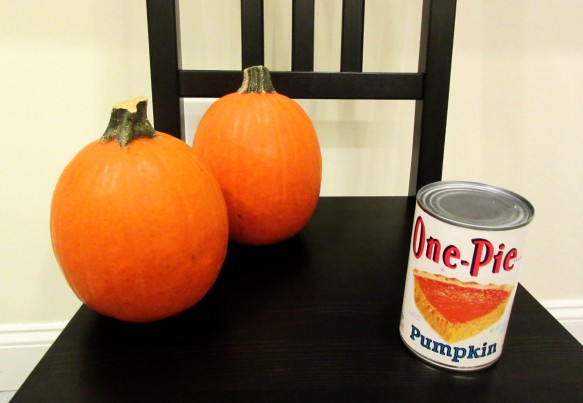 home made pumpkin puree vs canned pumpkin in pumpkin pie experiment