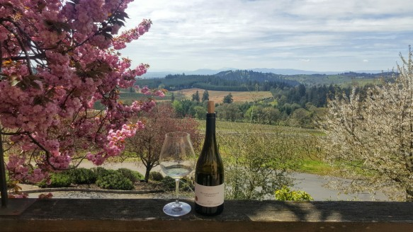 Wine with a View Villamette Valley Vineyard Albany Oregon